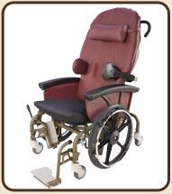 Evolution Mobility Chair Shown with No Options Installed